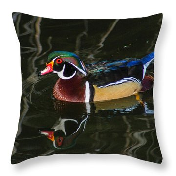 Wood Duck Reflections Throw Pillow by Robert Hebert