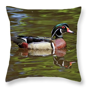 Wood Duck Throw Pillow