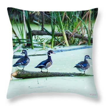 Wood Ducks All Grown Up Throw Pillow by Edward Peterson
