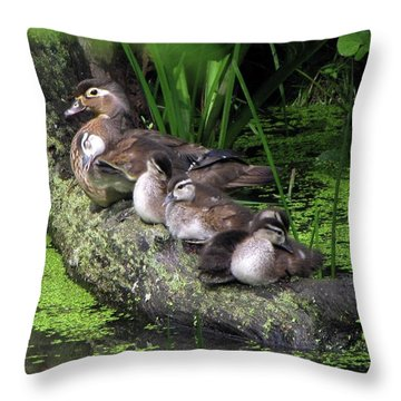 Wood Ducks On A Log Throw Pillow