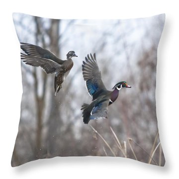Wood Flight Throw Pillow