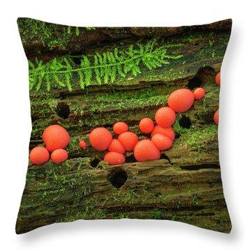 Wood Fungus Throw Pillow