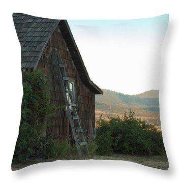 Wood House Throw Pillow