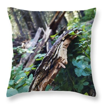 Wood In The Forest Throw Pillow by Janie Johnson
