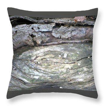 Wood Knot Throw Pillow by Michele Wilson
