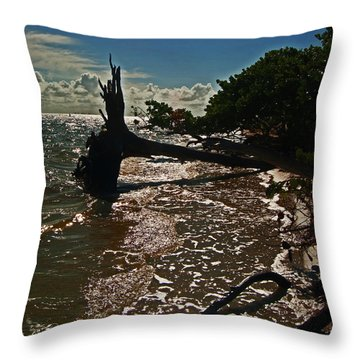 Wood Light Throw Pillow