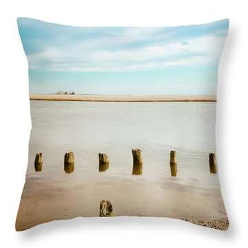 Throw Pillow featuring the photograph Wood Pilings In Shallow Waters by Colleen Kammerer