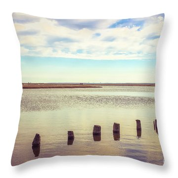 Throw Pillow featuring the photograph Wood Pilings In Still Water by Colleen Kammerer