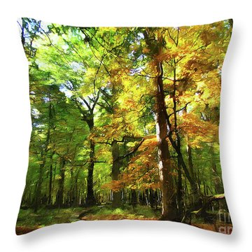 Wood Plank Trail Throw Pillow