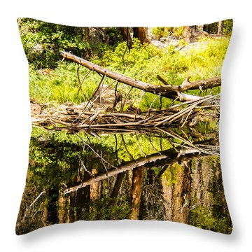 Wood Reflections Throw Pillow by Brian Williamson