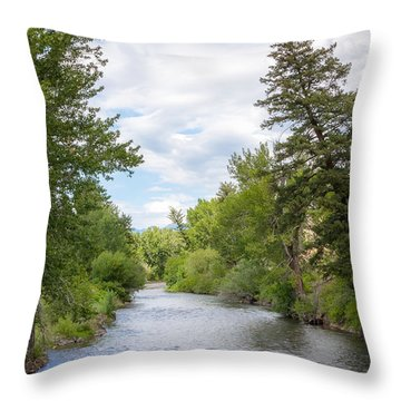 Wood River Crossing Throw Pillow