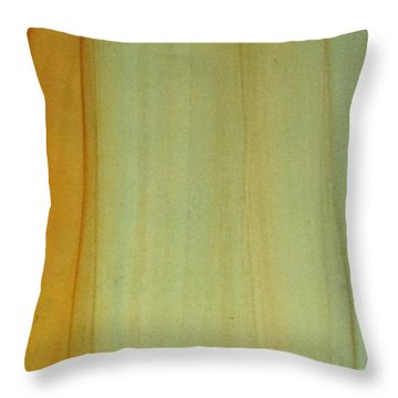 Wood Stain Throw Pillow