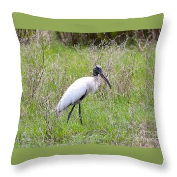 Wood Stork In The Marsh Throw Pillow