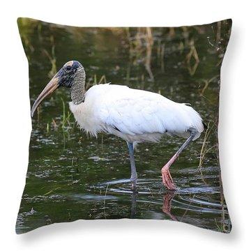 Wood Stork Through The Marsh Throw Pillow