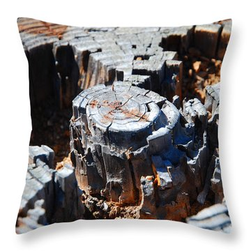 Wood World Throw Pillow