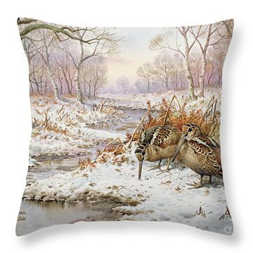 Woodcock Throw Pillow by Carl Donner