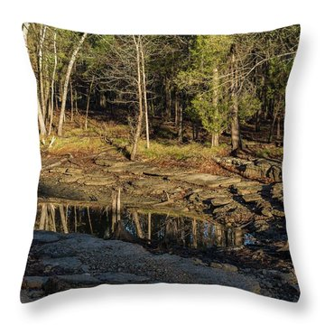 Wooded Backwash Throw Pillow