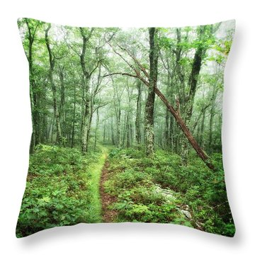 Throw Pillow featuring the photograph Wooded Trail by Alan Raasch