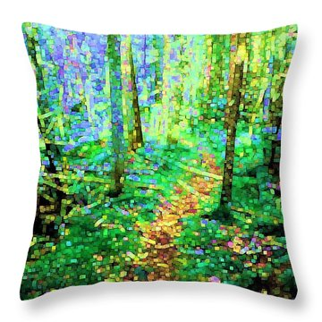 Wooded Trail Throw Pillow by Dave Martsolf