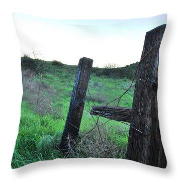 Throw Pillow featuring the photograph Wooden Gate In Field by Matt Harang