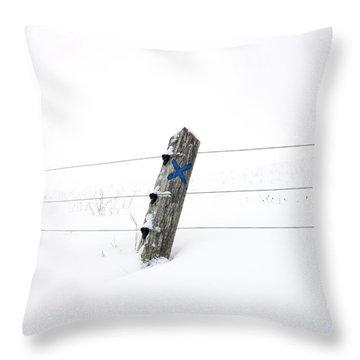 Wooden Post In Winter Throw Pillow by Bernard Jaubert