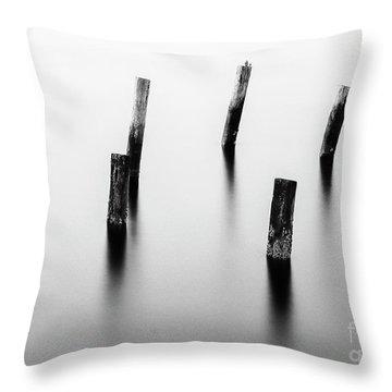 Wooden Post Throw Pillow