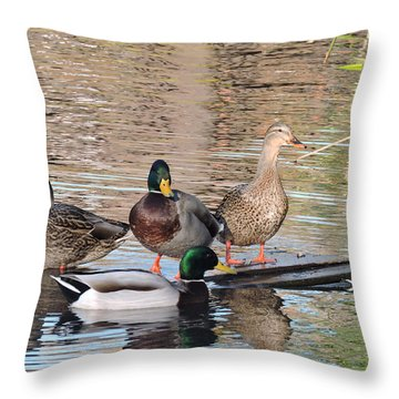 Woodies At Neary Throw Pillow