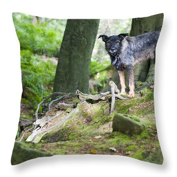 Woodland Dog Throw Pillow