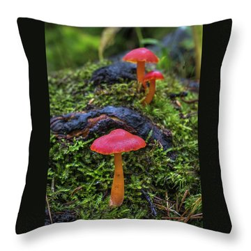 Throw Pillow featuring the photograph Woodland Floor Decor by Bill Pevlor