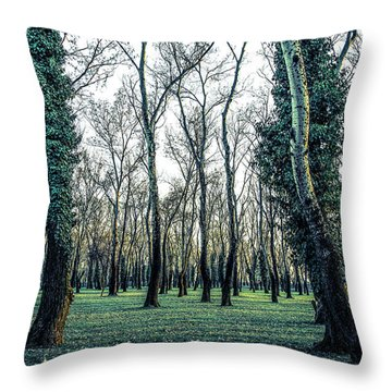 Woodland Throw Pillow by Lana Enderle