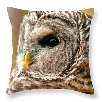 Woodland Owl Throw Pillow by Adam Olsen