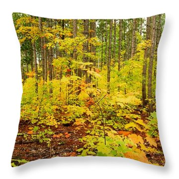 Woodland Panorama Throw Pillow by Michael Peychich