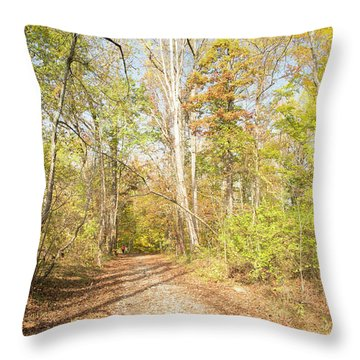 Woodland Path, Autumn, Montgomery County, Pennsylvania Throw Pillow