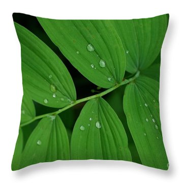Woodland Rain Throw Pillow by Tim Good