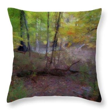 Woodland Steps Throw Pillow