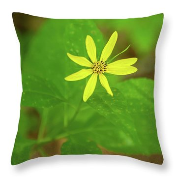 Throw Pillow featuring the photograph Woodland Sunflower by Lara Ellis