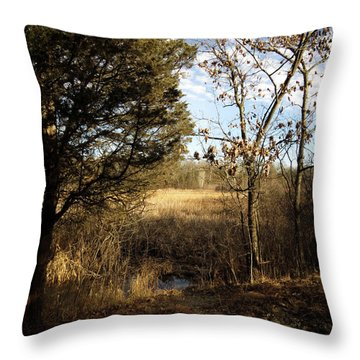 Throw Pillow featuring the photograph Woodland View  by Kimberly Mackowski