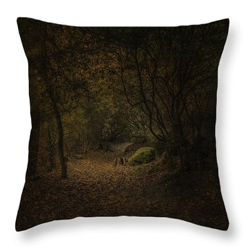 Throw Pillow featuring the photograph Woodland Walk by Ryan Photography