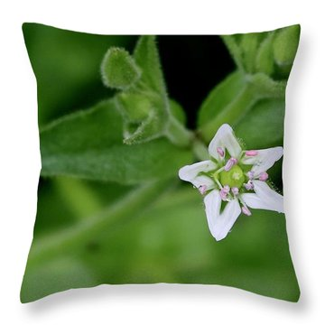 Woodland Wildflower Throw Pillow