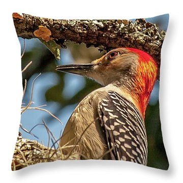 Woodpecker Closeup Throw Pillow