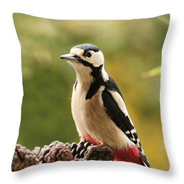 Woodpecker In Winter Throw Pillow