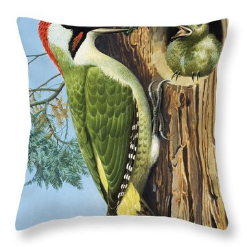 Woodpecker Throw Pillow by RB Davis