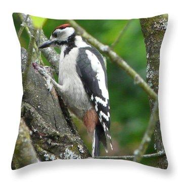 Woodpecker Throw Pillow by Valerie Ornstein