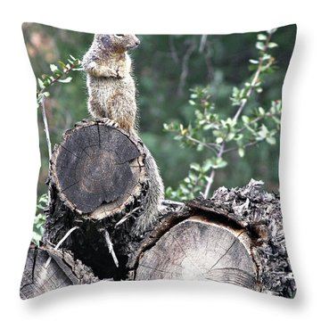 Woodpile Squirrel Throw Pillow