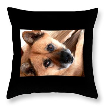 Woodrow Wooten Throw Pillow