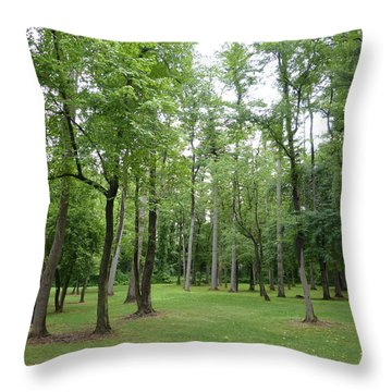 Woods At Lake Redman Throw Pillow by Donald C Morgan