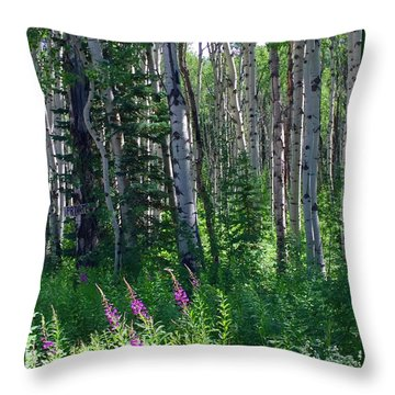 Woods Throw Pillow by Beth Saffer