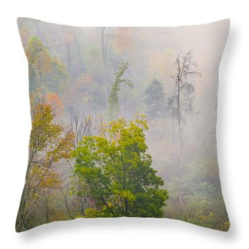 Throw Pillow featuring the photograph Woods From Afar by Wanda Krack
