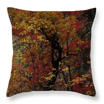 Woods In Oak Creek Canyon, Arizona Throw Pillow