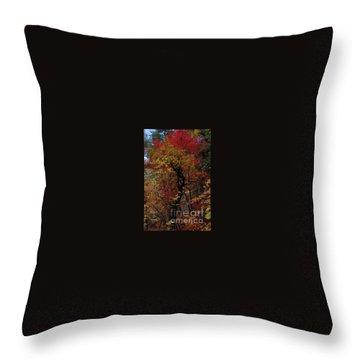 Woods In Oak Creek Canyon, Arizona Throw Pillow